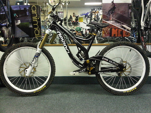2011 Devinci Wilson
