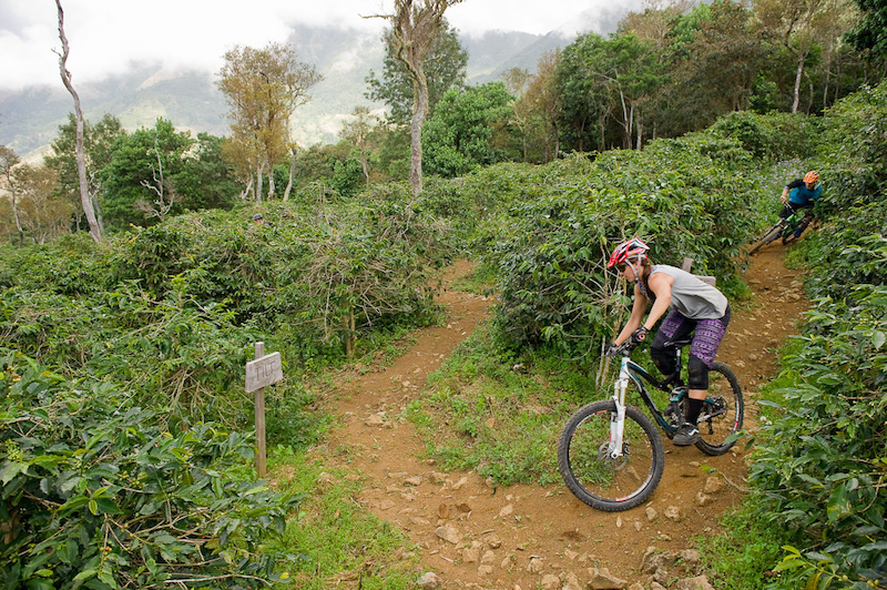 Seb Kemp and Katie Holden ride their bikes on trails near Blue Mountain in Jamaica at the Jamaica Fat Tyre Festival. This was part of the memorial ride for trail builder Ken Klowak who was killed last year in Mexico.