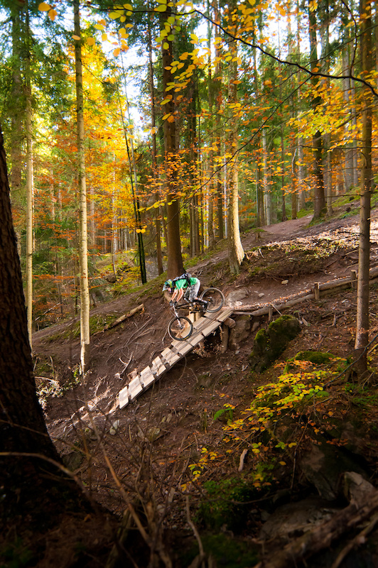 Bongo Bongo trail in Leogang, October 2010, Scott Voltage FR 20 2010
