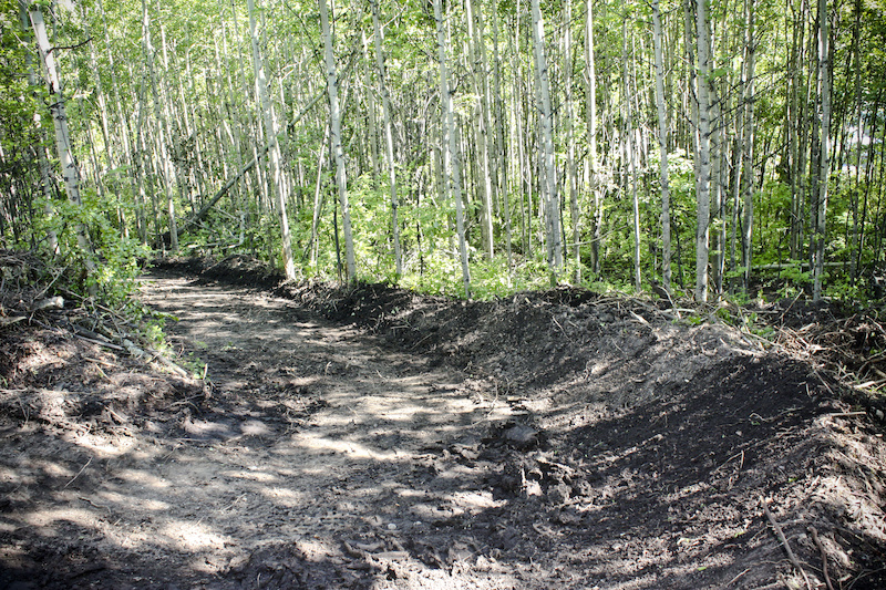 Trail widening in progress