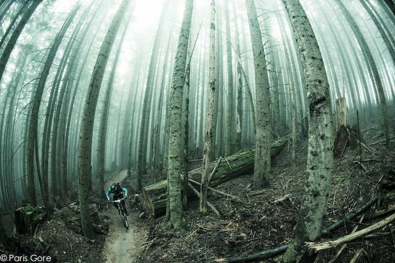 Racer at the first annual Tiger MT Enduro emerges through the mist during the second stage. -www.parisgore.com-