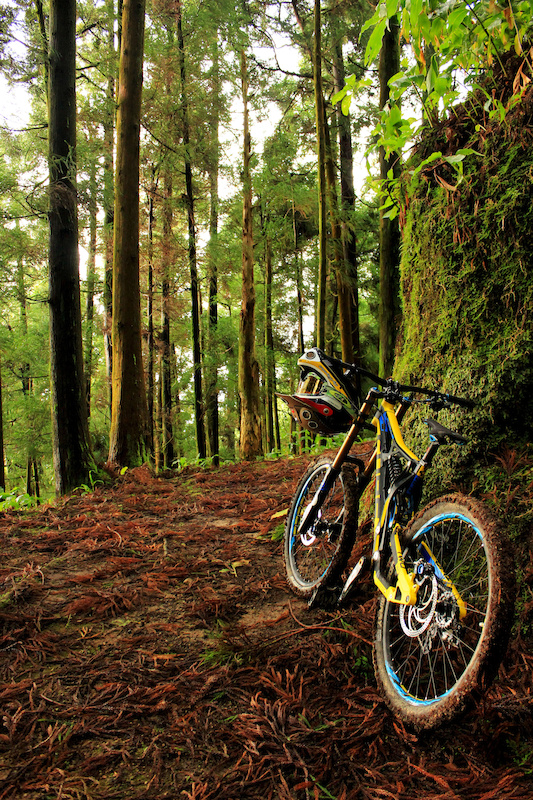 freeriding in the Azores islands