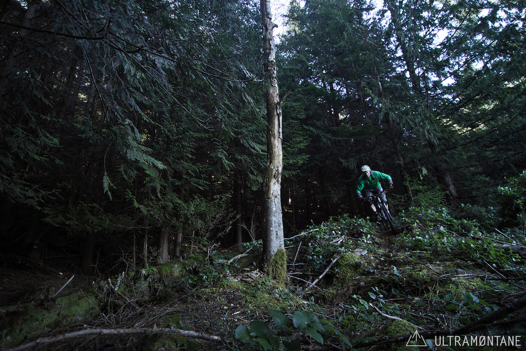 Cornering around an alder snag on a bluff.