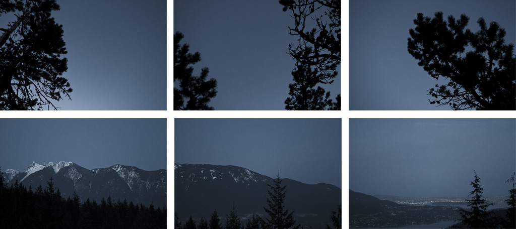 Mountains at dusk and tree tops