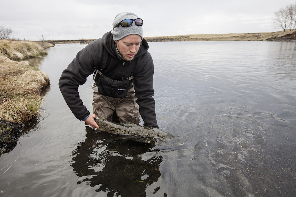 Myself in Iceland in 2012 with the trout of a lifetime.
