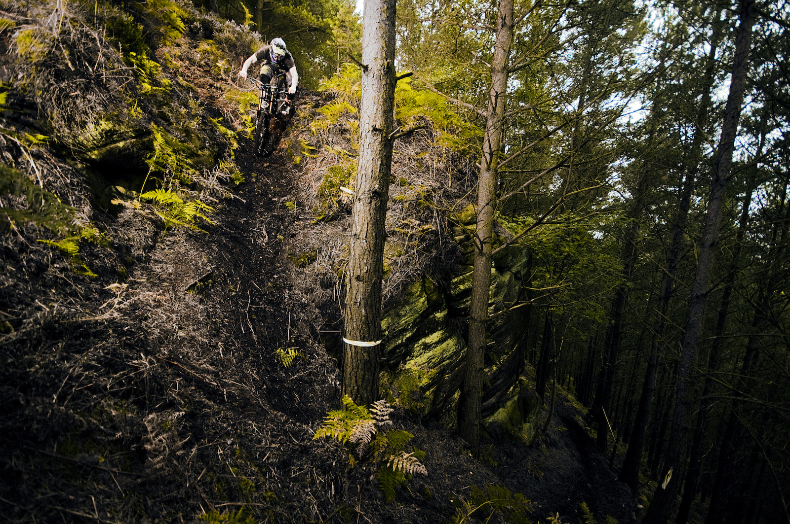 Scratchmere Scar, situated in Cumbria UK is home to a vast array of steep, tech and fast trails. Amidst the trees lay a fresh track that wasn't finished. The shoot, photo'd here was mega steep, loamy, loose and fast! 